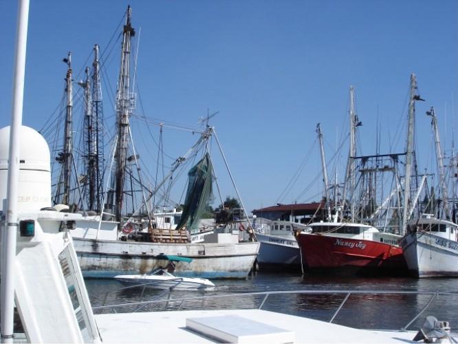 Der Hafen von Tarpon Springs, der Schwammhauptstadt der USA.