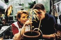 Grace (Brenda Blethyn) baut mit ihrem Gärtner (Craig Ferguson) Drogen an, um sich vor der Pleite zu retten.