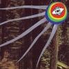 Treefight For Sunlight sind definitiv die Enkel von Brian Wilson.