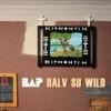 """""""Das wird schon wieder"""", lautet die BAP-Botschaft von """"Halv su wild""""."""