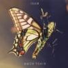 """""""Isam"""" ist das neunte Album von Amon Tobin. Angeblich."""
