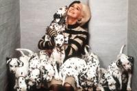 Cruella De Vil (Glenn Close) ist verrückt nach Dalmatiner-Fell.