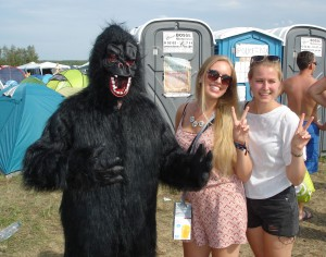 Gorilla Highfield 2015