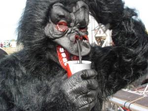Highfield 2015 Gorilla Strohhalm
