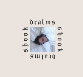 Cover des Albums Shook von Dralms bei Full Time Hoby