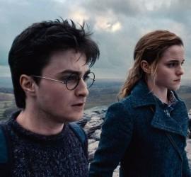 Harry Potter und die Heiligtümer des Todes beide Teile Rezension Kritik