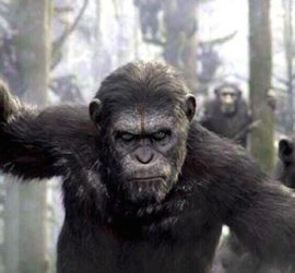 Planet der Affen: Revolution Kritik Rezension