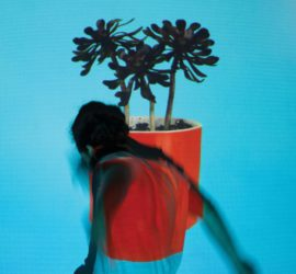 Local Natives Sunlit Youth Kritik Rezension