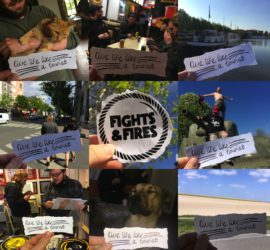 Live Life Like A Tourist Fights And Fires Kritik Rezension