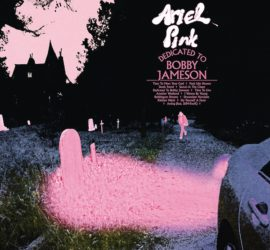 Dedicated To Bobby Jameson Ariel Pink Kritik Rezension