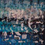 The Curious Hand Seamus Fogarty Kritik Rezension