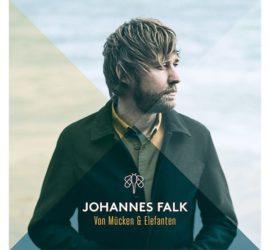 Von Mücken und Elefanten Johannes Falk Kritik Rezension