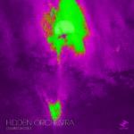 Dawn Chorus Hidden Orchestra Kritik Rezension