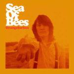 Sea Of Bees Orangefarben Review Kritik
