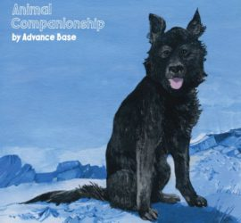 Animal Companionship Advance Base Review Kritik
