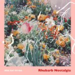 Wild Cat Strike Rhubarb Nostalgia Review Kritik