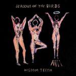 Wisdom Teeth Jealous Of The Birds Review Kritik