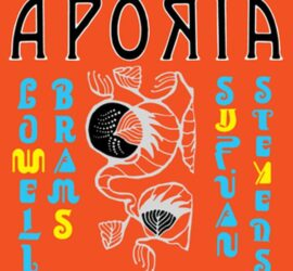 Aporia Sufjan Stevens Lowell Brams Review Kritik