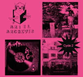 Ariel Pink Archive Cycle 2 Review Kritik