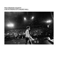Rex Orange County Live At Radio City Music Hall Review Kritik