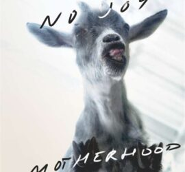 No Joy Motherhood Review Kritik